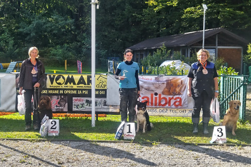 Obedience in Slovenska Bistrica